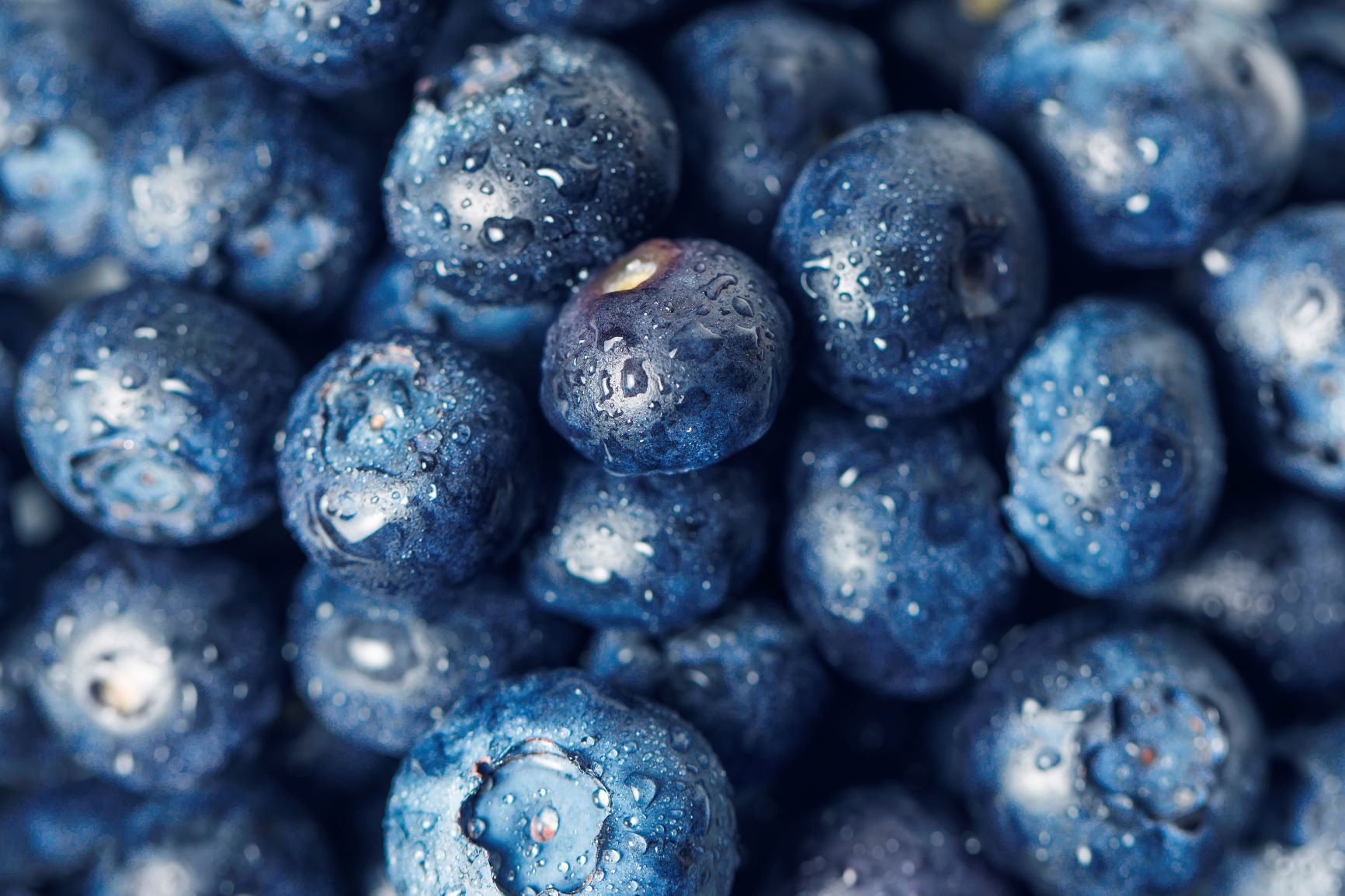 The Magic Of Blueberries!